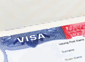 How To Find The Right EB-5 Immigration Attorney?