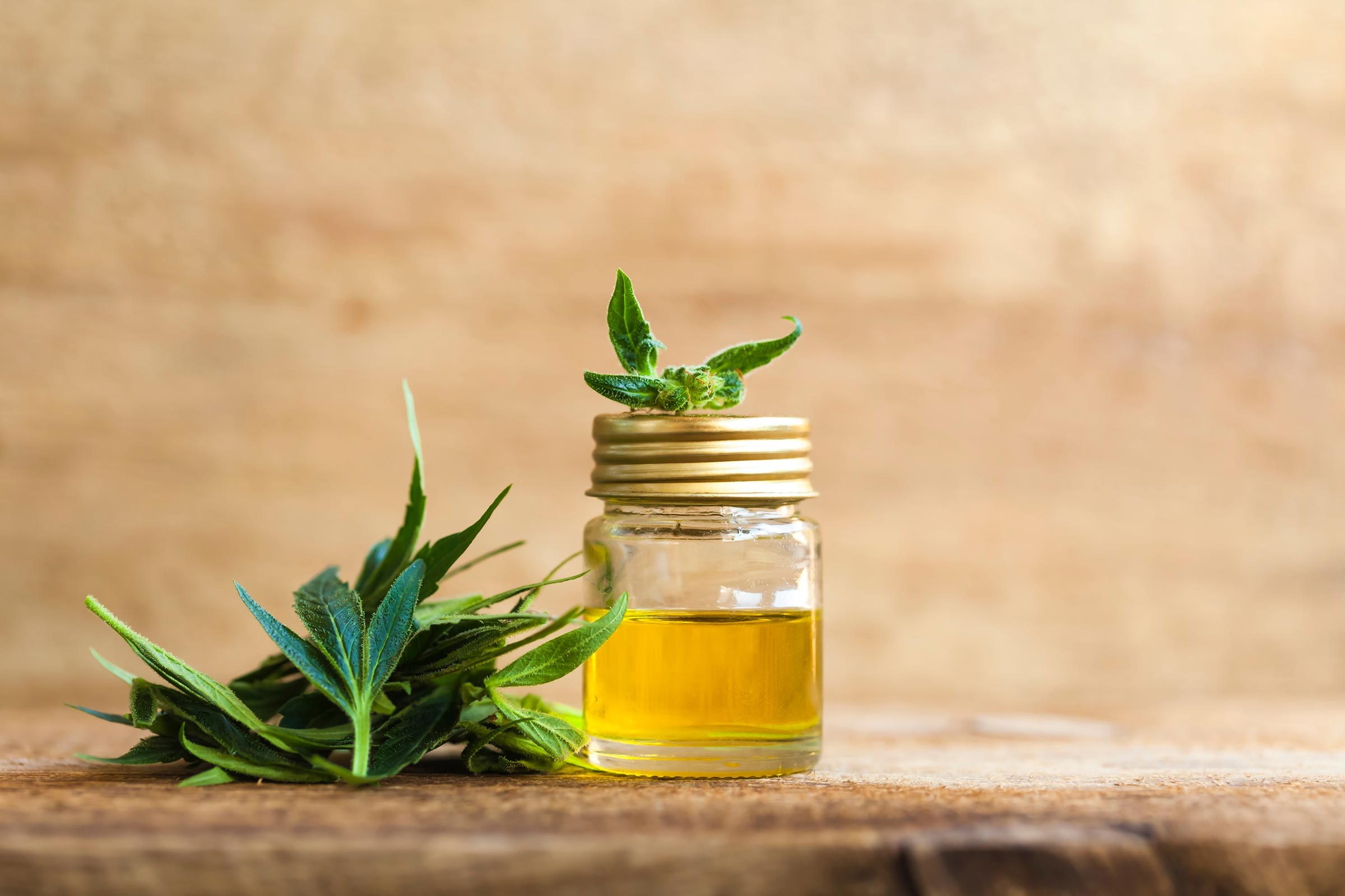 What Are Medical Benefits Of CBD Oil? TechView Media